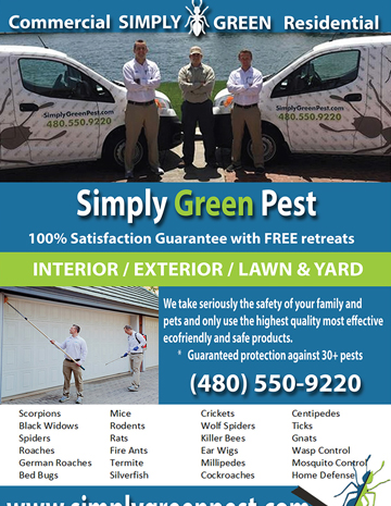 flyers business cards pest control company